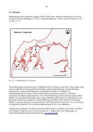 48 3.2.7 Plankton Planktonprøver blev indsamlet 26 ... - Limfjorden
