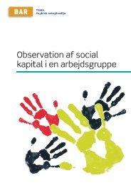Observation af social kapital i en arbejdsgruppe - 5 i 12 – Bedre ...