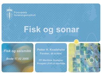 Petter H. Kvadsheim, Forsvarets forskningsinstitutt: Fisk og sonar