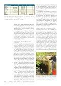 TEMA: Status for den danske laks 2009 - Grindsted ... - Page 6