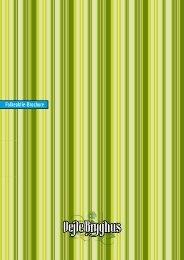 Folkeaktie-Brochure - Vejle Bryghus