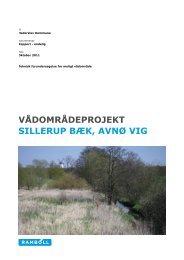 Forundersøgelsesrapport Sillerup Bæk - Haderslev Kommune