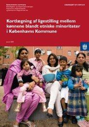 Kortlægning af ligestilling mellem kønnene blandt etniske ... - Cowi