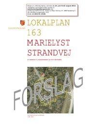 Forslag Lokalplan 163 Marielyst Torv og Strand.pdf - Guldborgsund ...