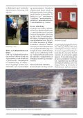 DHL Stafetten 2008 - Page 5