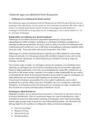 Etablering af en webshop på det danske marked - Christine Tindahl