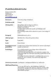Praktikstedsbeskrivelse - Hadsund Skole