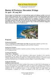 Bustur til Portoroz, Slovenien 10 dage - Ringe & Omegns ...