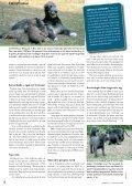 """Artiklen """"Frostsæd"""" fra HUNDEN september 2006 - Page 3"""