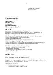 Silkeborg Gymnasium September 2010 Organisationsbeskrivelse 1 ...