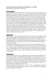 Erosionsmodellering i forbindelse med ... - NP-Risikokort.dk