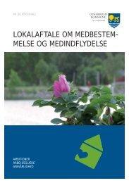 MED-aftale - folder.indd - Odsherred Kommune