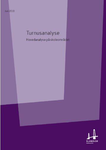 Samlet analyse skoleområdet - Grundejerforeningen Taarnborg