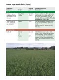 Markbogen 2013 - Danish Agro - Page 6
