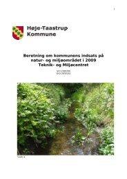 Beretning om kommunens indsats på natur- og miljøområdet i 2009 ...