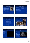 Ansager Case 1 Ansager Case 1 Ansager Case 1 Ansager Case 1 ... - Page 2