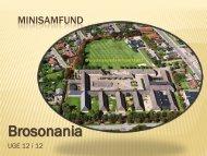 Brosonania - Brorsonskolen