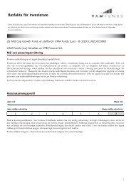 Key Investor Information: LU0214333063 - VPBANK