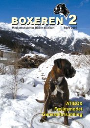Boxer 2-2009.pmd