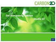 Oplæg, Københavns Kommune - Carbon 20