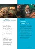 Læs side 5 i MiljøDanmark nr. 3, 2005 - Page 4