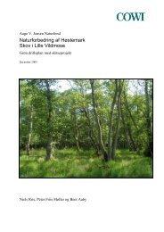 Grøn driftsplan – Høstemark Skov - Aage V. Jensens Fonde