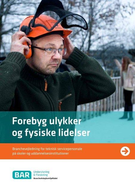 Hent Forebyg ulykker og Fysiske lidelser - Arbejdsmiljoweb.dk