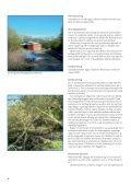 Lokalplan 200 - Page 6
