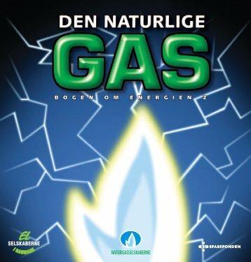 """""""Bogen om energien"""" som PDF-fil. - Spargas"""