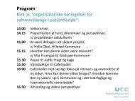 Præsentation af projekt med fokus på midlertidige fund