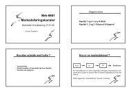 Mrk-9801 Markedsføringskanaler
