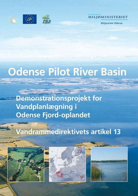 Odense Pilot River Basin