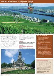rhinen, rüdesheim 6 dage eller 5 dage - NILLES REJSER A/S