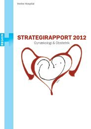 STRATEGIRAPPORT 2012 - Herlev Hospital