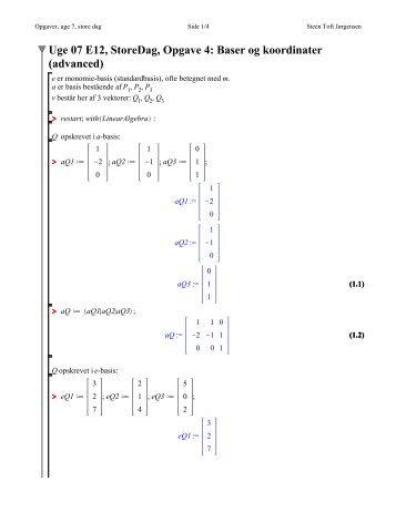 Uge 07 E12, StoreDag, Opgave 4: Baser og koordinater (advanced)