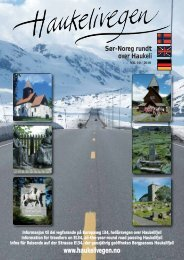 vegen - Onze autovakanties in Noorwegen
