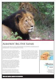Afrika, Big 5 Safari, priser fra 14.990 - Albatros Travel