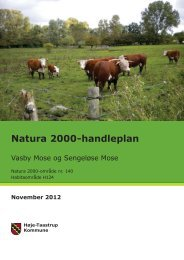 Natura 2000-handleplan - Høje-Taastrup Kommune
