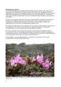 Natura 2000-handleplan Vadehavet - Esbjerg Kommune - Page 6