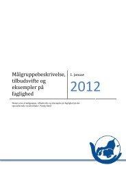 Målgruppebeskrivelse, udarbejdet i 2012 - Rammeaftaler Nord