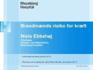 Oplæg fra forsker Niels Ebbeshøj, Bispebjerg Hospital