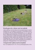 Brochure 3 - Nordborg Kirke - Page 5