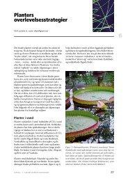 KAPITEL 6 • PLAnTErs ovErLEvELsEssTrATEgIEr - Brug Botanisk ...