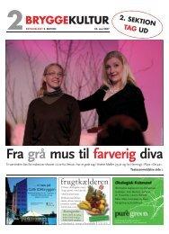 Nr. 09-2007 (23.05.2007) - 2. sektion Størrelse - Bryggebladet