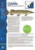 FAKTA OM FISK & SKALDJUR - Svensk Fisk - Page 4