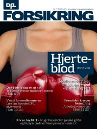 DFL Forsikring 2-2013