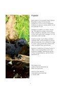 Mink hjælper mink - Dyrenes Beskyttelse - Page 2