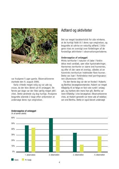 Mink hjælper mink - Dyrenes Beskyttelse