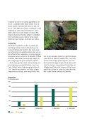 Mink hjælper mink - Dyrenes Beskyttelse - Page 7