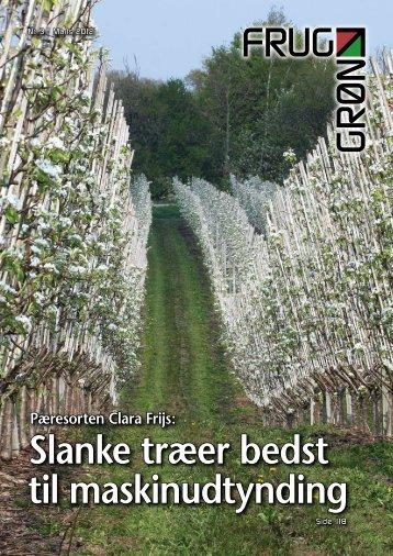 Slanke træer bedst til maskinudtynding - Gartneribladene